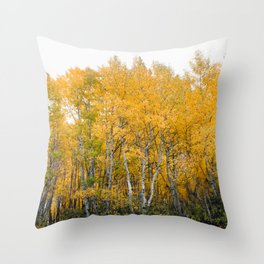 Fall Color in the Sierras Throw Pillow