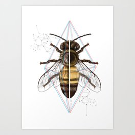 BeeSteam Art Print