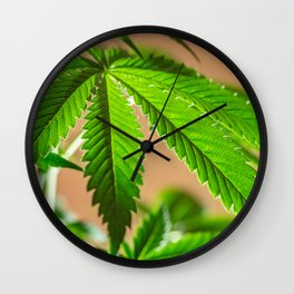 Cloned Wall Clock