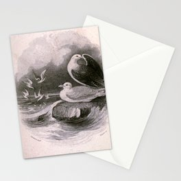 Petrel Tern8 Stationery Cards