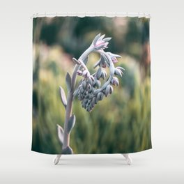Morning In The Succulent Garden #4 Shower Curtain