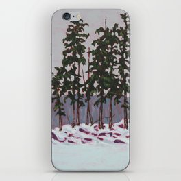 Frozen Island, Algonquin Park iPhone Skin