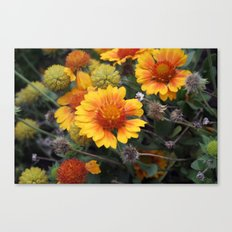 A Full Cycle Canvas Print