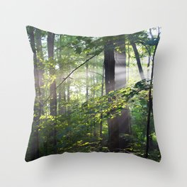 Cabin Light Throw Pillow