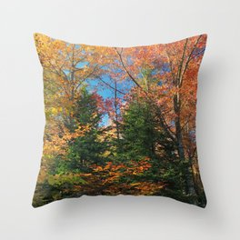 Autumn Forest Photograph Throw Pillow