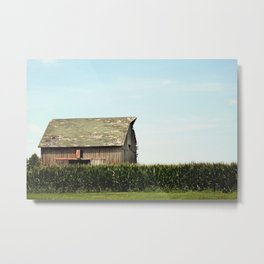 On the Outskirts  Metal Print