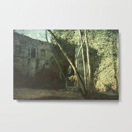 Vintage ruins gard Metal Print
