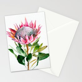 Protea Stationery Cards