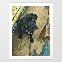 Dog Days of Summer Art Print