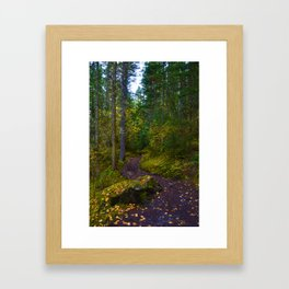 Walking along the Berg Lake Trail in Fall Framed Art Print