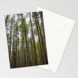 Montana Woods Stationery Cards