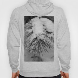 Touch of Winter - Black & White Hoody