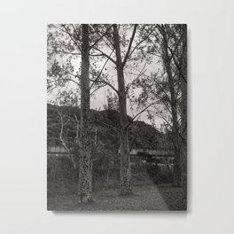 Dark Silver Trees Metal Print