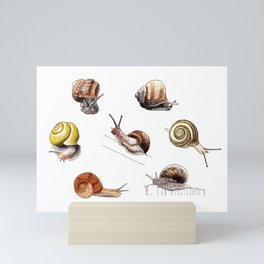 Snail party Mini Art Print