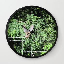 Mourning Dove on Takeoff Wall Clock