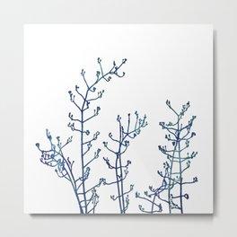 Elegant Classic Blue Jasmine Flower Branch Metal Print