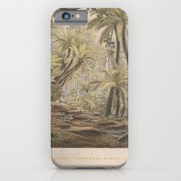 Ferntree Gully, Dandenong Ranges, Victoria by Eu von Guerard Date 1867  Romanticism Series Australia iPhone Case