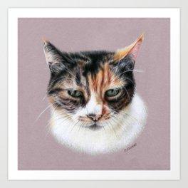 Cat portrait colored pencils Art Print