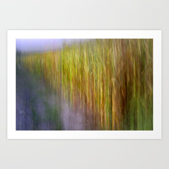 Cornfields. Memories of Van Gogh.... Art Print