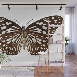 "Butterfly species Tirumala limniace ""Blue Tiger"" Wall Mural"