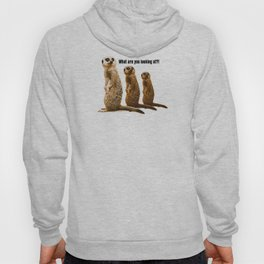 What Are You Looking At?! (Meerkats) Hoody