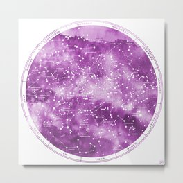 Northern Stars Rose Metal Print