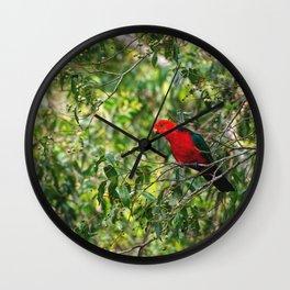 Australian king parrot Wall Clock