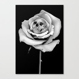 Beauty & Death Canvas Print