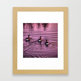 Ducktails Framed Art Print
