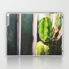 green cactus with green and white wood wall background Laptop & iPad Skin