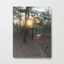 Trail Metal Print