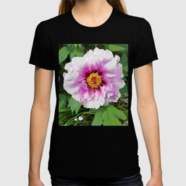 Rose and mauve peony with a heart of gold T-shirt