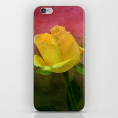 Pink, Green and Yellow iPhone & iPod Skin