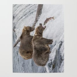 The Catch - Brown Bear vs. Salmon Poster