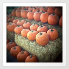 Pumpkins On Display Art Print