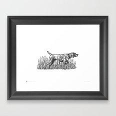 Pointer Framed Art Print