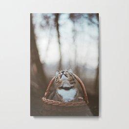 Cat in a basket Metal Print