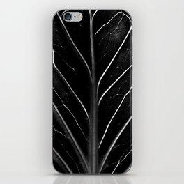 The black leaf iPhone Skin