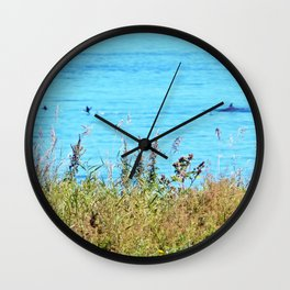 Whale chasing ducks close to shore Wall Clock