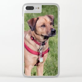 Rover Clear iPhone Case