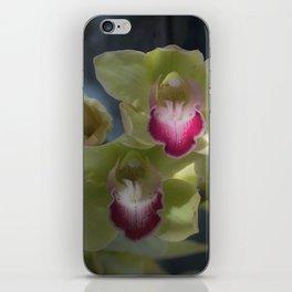 Cymbidium_Orchid_1 iPhone Skin