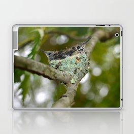 Togetherness Baby  Hummingbirds Laptop & iPad Skin