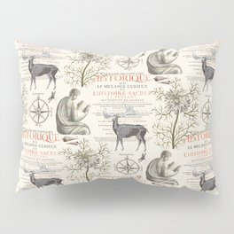 Quest for Knowledge Pillow Sham