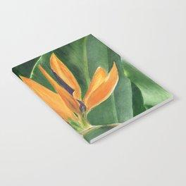 Simply Elegant by Teresa Thompson Notebook