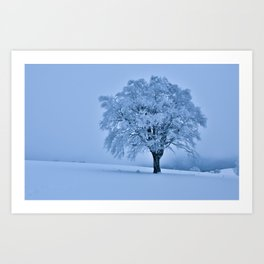 Solitary Snow Tree - Landscape Photograhpy Art Print