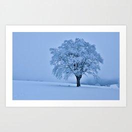 Solitary Snow Tree - Landscape Photograhpy Art Print