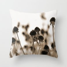 Daisy Heads - Winter Throw Pillow