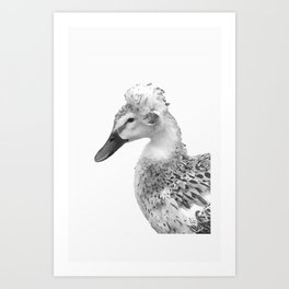 Bushy-haired Duck Art Print