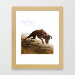 Dogs with the game face on .45 Framed Art Print