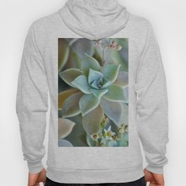 Succuent Bloom Hoody